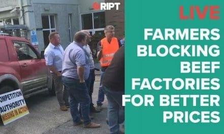 Beef Blockade