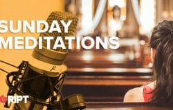 Sunday Reflection 03 - The Church as a Society