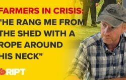 Mattie White describes the consequences of the beef crisis on farmers' mental health