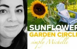 HomeGrown Home: Create a beautiful sunflower circle in your garden!