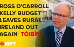 "Peadar Tóibin Hammers ""Ross O'Carroll-Kelly"" Budget, Demise of Rural Ireland"