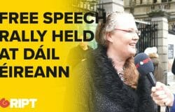 Rally for Free Speech at Dáil Éireann, protesting Fine Gael's  upcoming attempts to censor speech