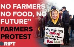 "Farmers Protest: ""No farmers, no food, no future"""