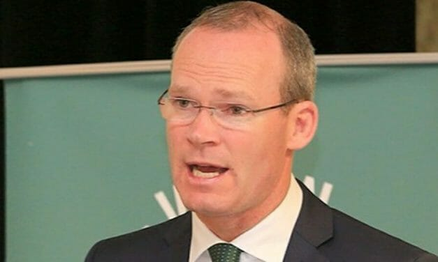POLL: Simon Coveney indicated the government might ban protests. Do you agree?