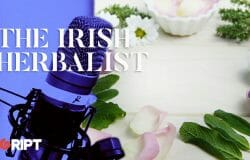 The Irish Herbalist 05 - How to care for your Kidneys