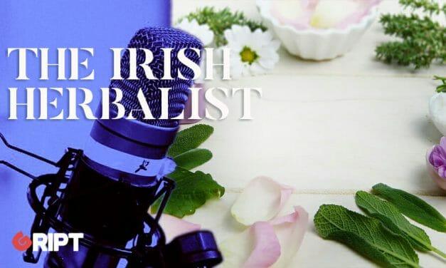 The Irish Herbalist 15 – Rose, the Queen of Flowers