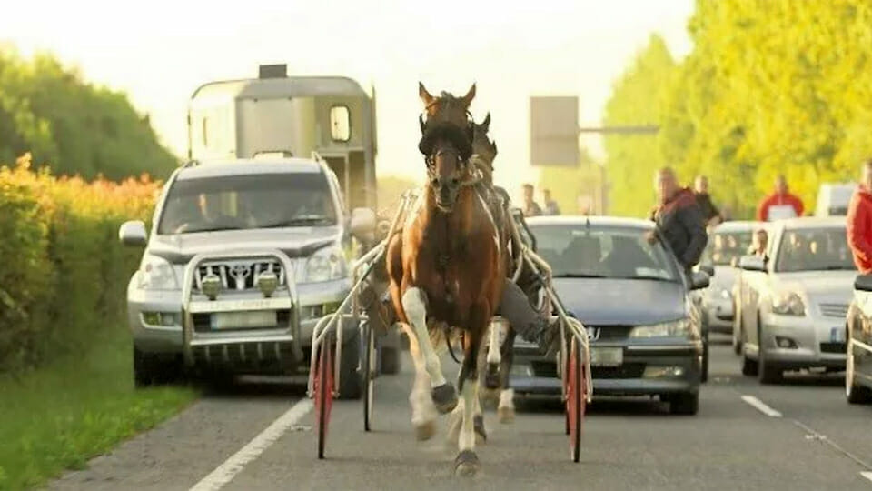 Minister spends €86,600 on 'awareness' raising for Sulky Racers
