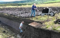 Turf cutter says he'll return to EU-protected bog after four men found not guilty