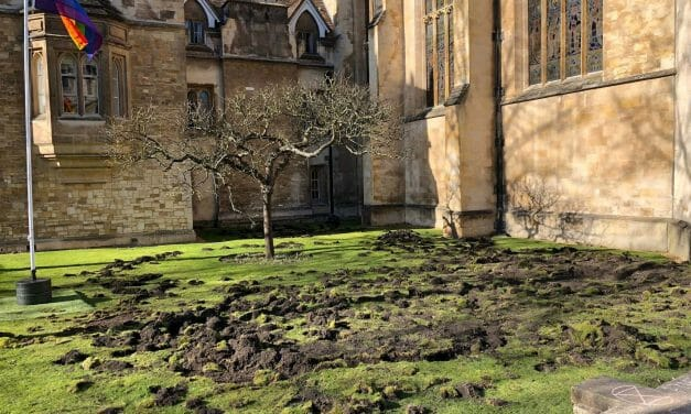 Extinction Rebellion: We destroyed this ancient lawn to protest climate change