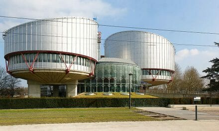 NGOs and judges at the ECtHR: a need for clarification