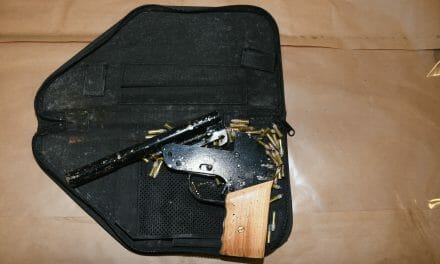 Suspected firearm seized after high-speed chase in Limerick