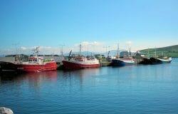 Dingle fishermenblock Spanish landingamid Coronavirus fears
