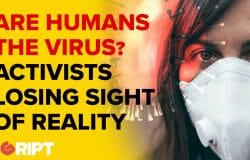 """Journalists like Fintan O'Toole say """"Humans are the virus"""" from the earth's perspective."""