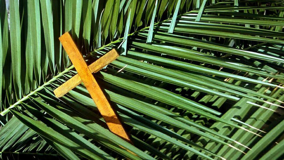 """""""A branch on the door"""": Call to connect on Palm Sunday"""