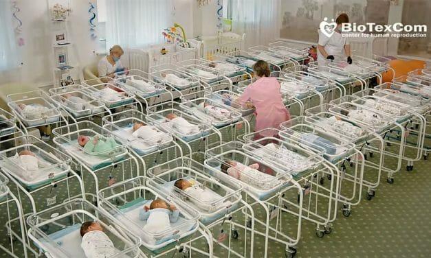 Ukraine's surrogacy hatchery