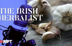 The Irish Herbalist 12 - Garlic