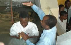 Indifference to suffering of beheaded Christians deplored by Bishop