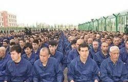 20 TDs/Senators sign letter asking Irish government to condemn China's treatment of Uighurs