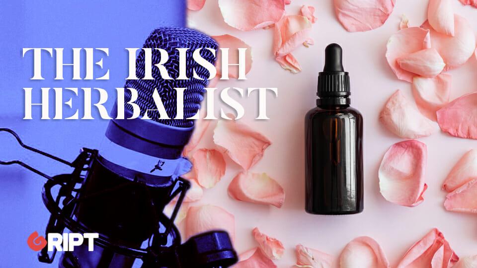 The Irish Herbalist 15 - Rose, the Queen of Flowers