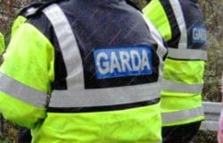 POLL: Should Ireland abolish the Gardaí, as suggested by a recent RTÉ article?