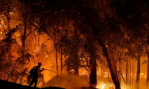 California is burning – and politicians are weaponisingit