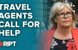 Travel agents call for industry help as travel disruptions continue